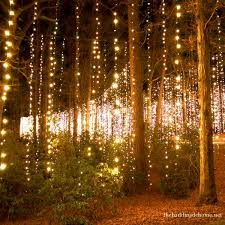 25 outdoor tree lighting ideas on outdoor