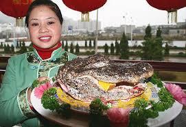 cuisine alligator alligator soup raises eyebrows in china