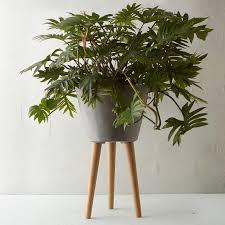 wooden leg taper pot wooden leg concrete wood and legs