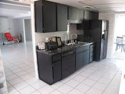 kitchen ideas with black cabinets black appliances kitchen ideas quicua com
