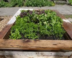 square garden houzz