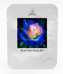 aliexpress com buy rare blue pink yellow rose bush flower seeds