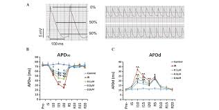 Time Difference Map Taxol Stabilizes Gap Junctions And Reduces Ischemic Ventricular