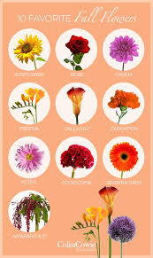 fall flowers for wedding 10 favorite fall wedding flowers crazyforus