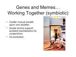 Genes And Memes - meme