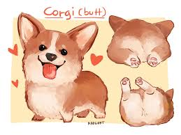 rdjism when i have a trouble drawing corgi and derp