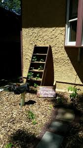 vertical strawberry planter reclaimed ladder 10 steps