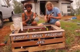 How To Build A Raised Garden Bed Cheap How To Build A Self Watering Raised Garden Bed From Scavenged