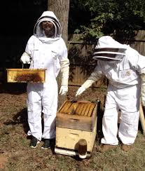 about us buzz beekeeping supplies