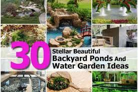 30 stellar beautiful backyard ponds and water garden ideas