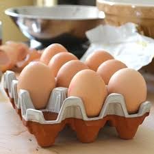 ceramic egg tray 12 ceramic egg trays with glaze 12 eggs terracotta uk
