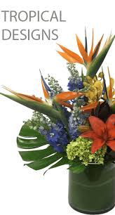 Flower Shops In Augusta Maine - flowers online chicago flower delivery service il online