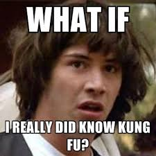 Kung Fu Meme - what if i really did know kung fu martialartsmemes com