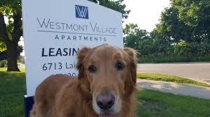 westmontvillageapts wva apts twitter