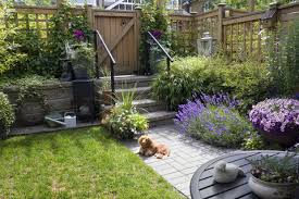small garden ideas from dublin and cork garden designers