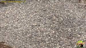 pavimentazione in ghiaia preparare un parcheggio con erba