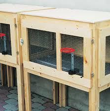 gabbie per conigli nani usate gabbia per conigli fai da te progetto completo e dettagliato