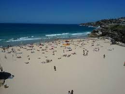 20 Great Dog Walks Around Sydney And Central Coast Australian Bondi To Coogee Beach Coastal Walk Sydney