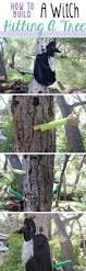 best 25 tree tree ideas on pinterest tree arborist tree