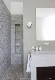 the shower niche a universal symbol for stylish bathrooms the shower niche a universal symbol for stylish bathrooms
