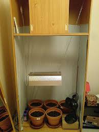 chambre de culture complete cannabis armoire cannabis how to grow marijuana indoors and outdoors a