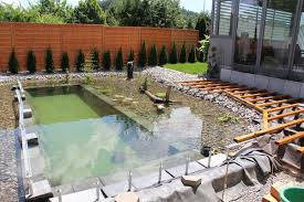 backyard ponds you can swim in outdoor furniture design and ideas