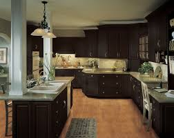 Dark Cabinets Kitchen Ideas 102 Best Black Kitchen Cabinets Images On Pinterest Kitchen