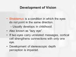 Blind In One Eye Depth Perception Chapter 6 Vision Ppt Download