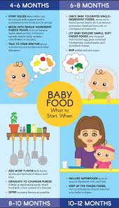 baby food recipes ideas u0026 nutrition tips parents