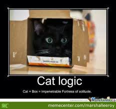 Black Box Meme - catlogic cat box impenetrable fortress of solitude by