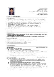 Resume For Artist Last Update 22 03 2015 Vernoo Cv