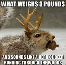 Deer Hunting Memes - huntstand com on twitter haha you guessed it