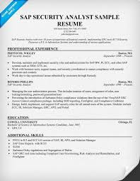 Business Analyst Roles And Responsibilities Resume Chief Purchasing Officer Resume Effect Environment Maxillofacial