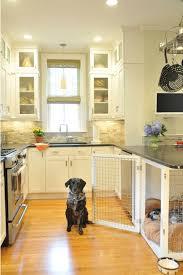 indoor kitchen indoor kitchen dog houses