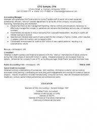 Venture Capital Resume Cfo Sample Resume Ambrionambrion Minneapolis Executive Search