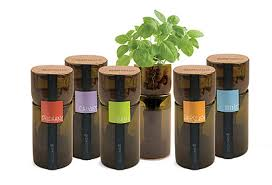 Wine Bottle Planters by Gifts For The Green Thumb Growbottle Hydroponic Planters 35