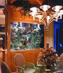 Aquarium Room Divider Aquariums Different Types Of Aquariums