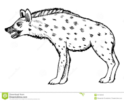 hyena clipart shenzi pencil and in color hyena clipart shenzi