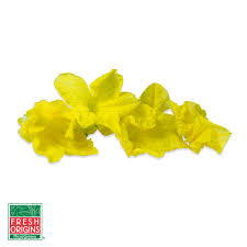 Flowers For Sale Edible Cucumber Flowers For Sale Marx Foods