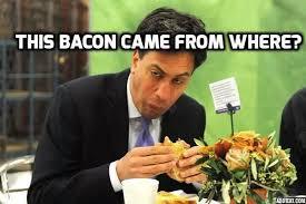 Cameron Meme - david cameron pig memes go viral oink oink memes and funny memes