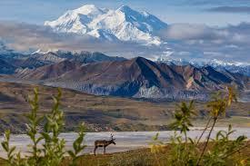 Mccarthy Alaska Map by Visit Denali National Park Alaska Vacation Tour Denali Bus Tour