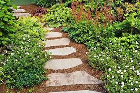 Backyard Stepping Stones by Garden Stepping Stones Lowes Front Yard Landscaping Ideas