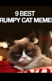 Tard The Cat Meme - 9 of the best grumpy cat memes politepastel wattpad