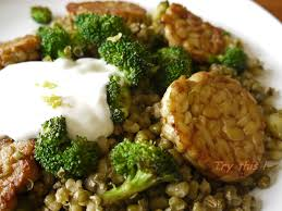 cuisiner le tempeh pan fried mung beans with tempeh try this