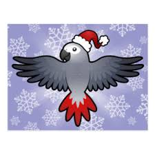 african grey parrot christmas cards zazzle