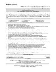 cosy real estate agent resume description with additional new real
