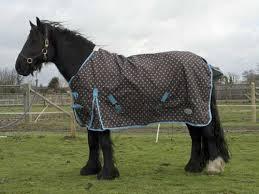 Outdoor Rugs For Horses Rhinegold Spotty Torrent Outdoor Rug Lottie Crocker