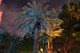 Firefly Landscape Lighting Firefly Landscape Laser Lights Laser Outdoor Projector Green