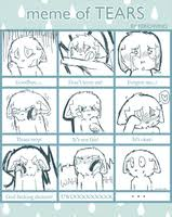 Tears Meme - meme of tears by feriowind on deviantart