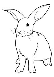 coloriage lapin à colorier dessin à imprimer animaux pinterest